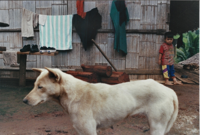 Lisu Dog and Child