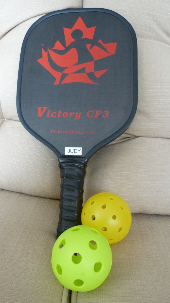 Pickle Ball Paddle and Balls