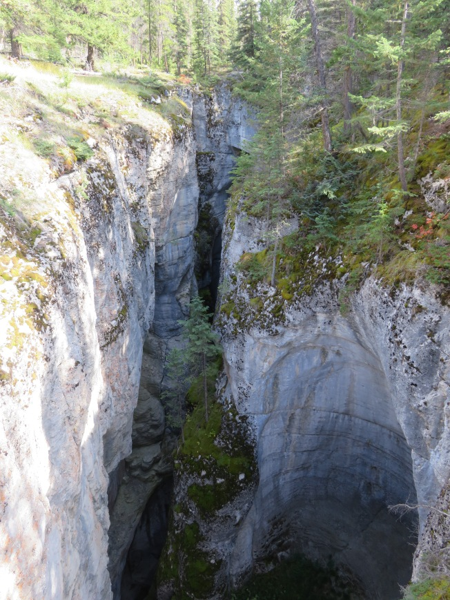 Maligne Gorge