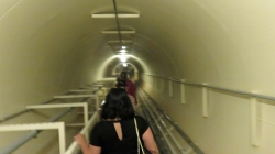 Lung tunnel2