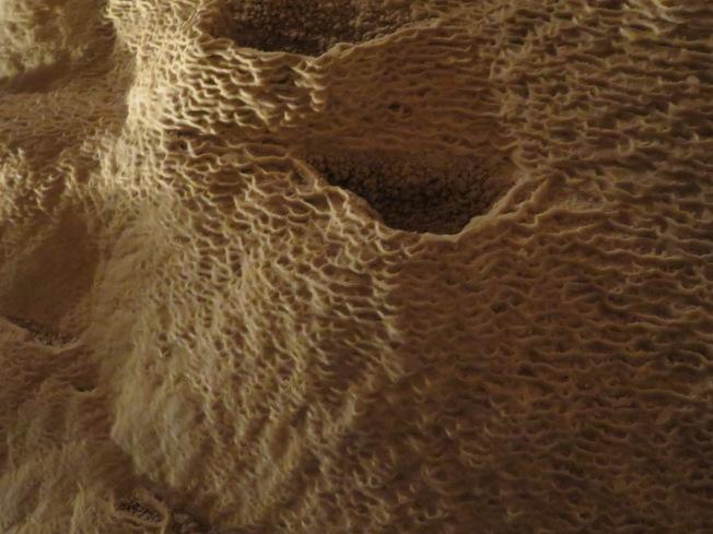 Rippling Texture