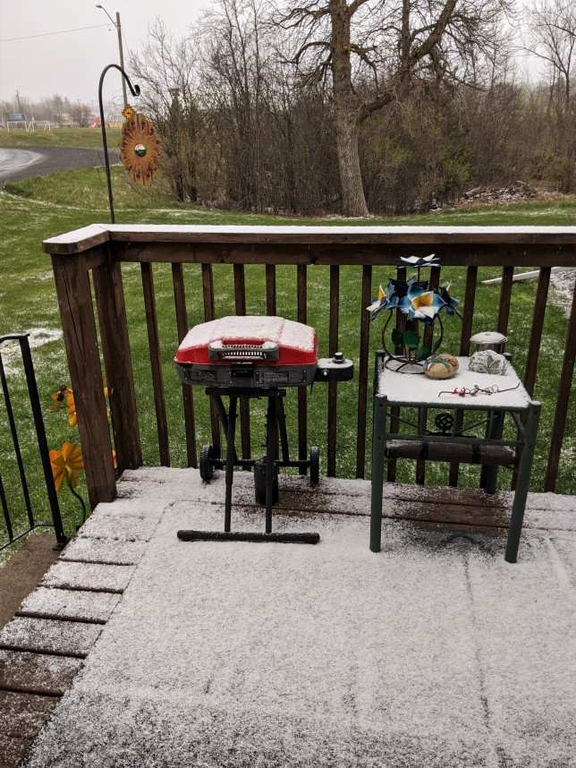Snow on the deck, May 8, 2020